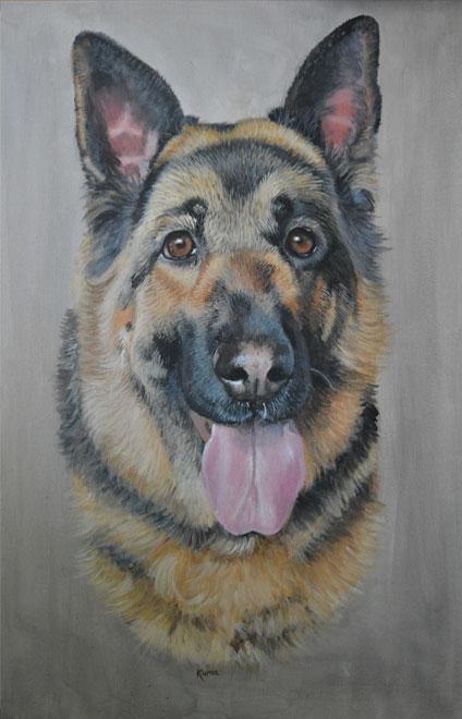 Kuma the German Shepherd